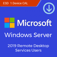 Microsoft Windows Server Remote Desktop Services CAL 2019 Single Language (корпоративная OLP лицензия на 1-го пользователя)